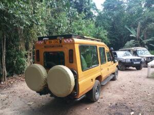 Luxury tourists landcruiser